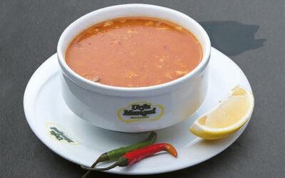 Suppen und Salate